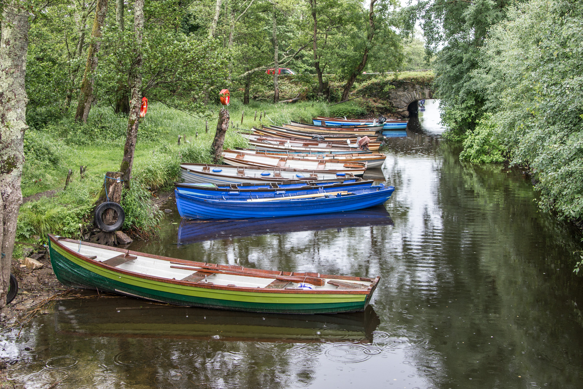 Colorful rowboats on a river in Killarney National Park