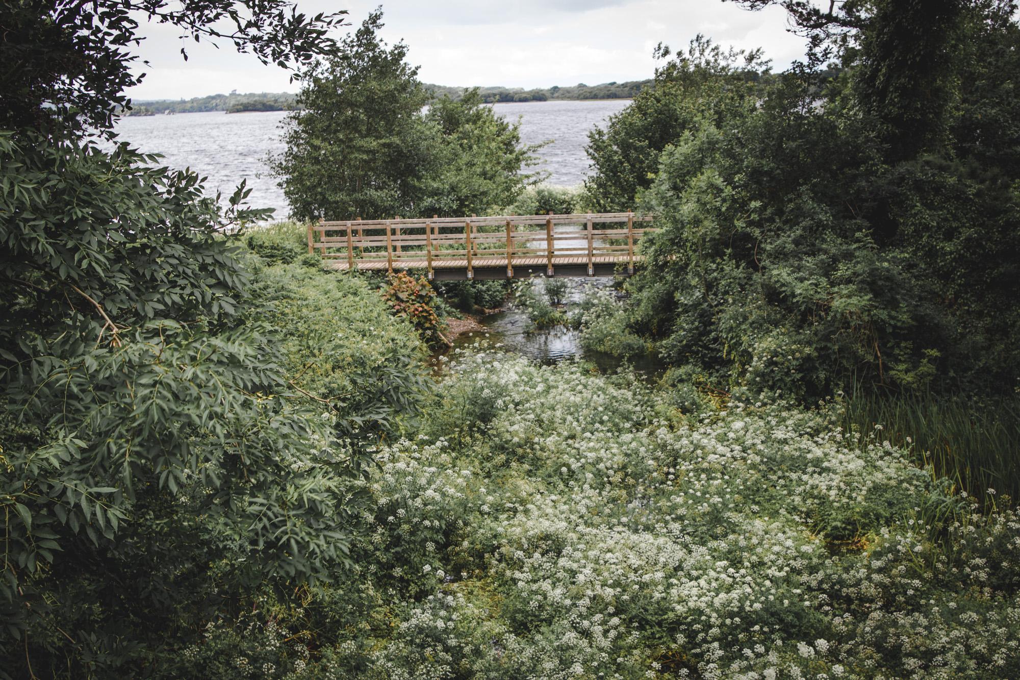 Bridge in Killarney National Park in Ireland