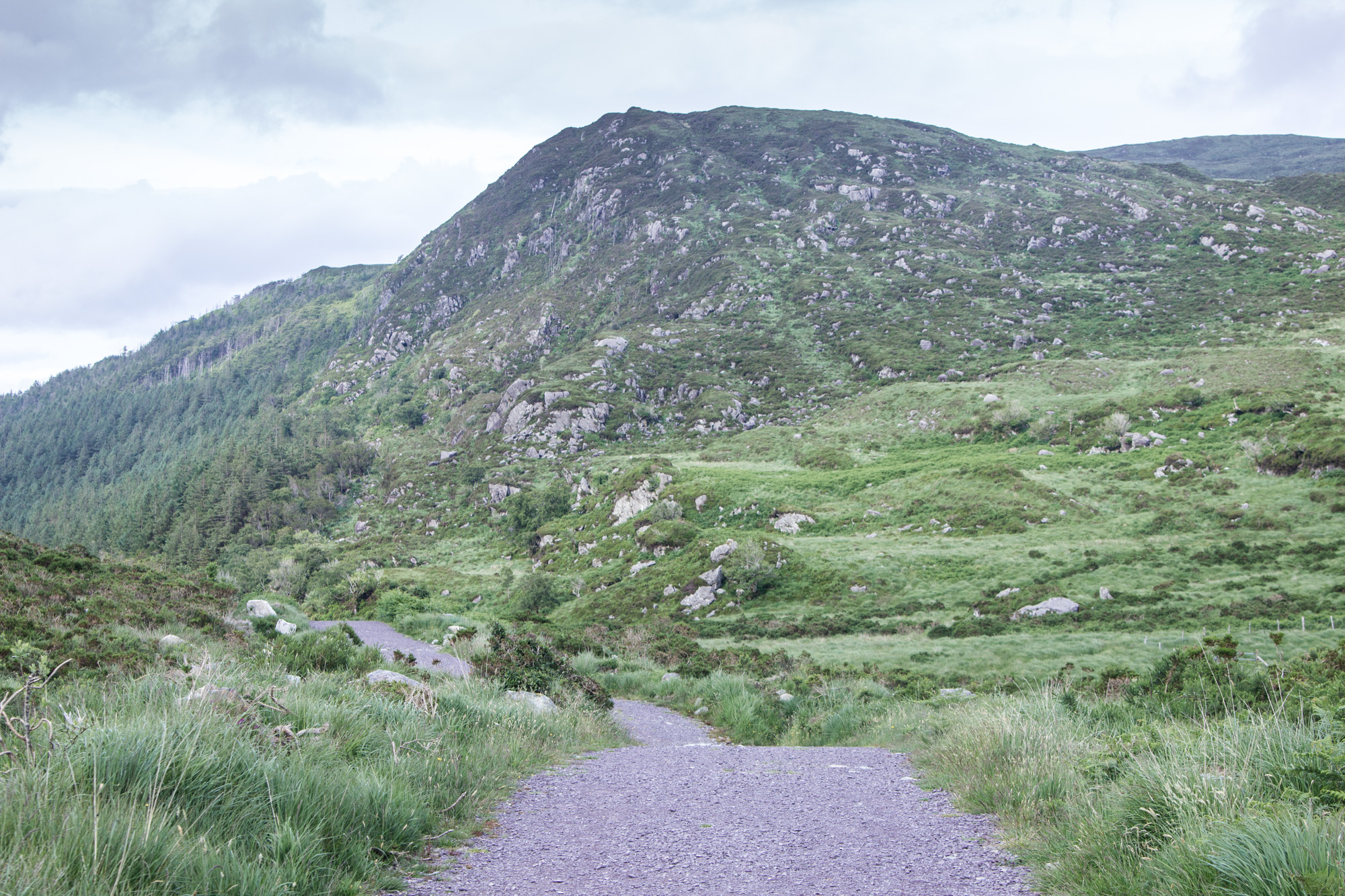 Torc Mountain Trail in Killarney National Park in Ireland is surrounded by grass, rocks, and other hills and mountains