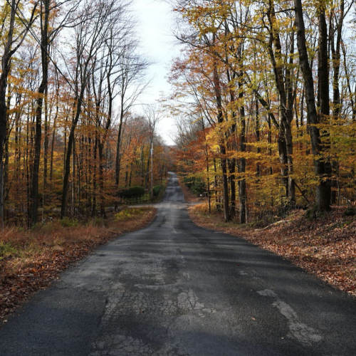 River Road Fall Foliage