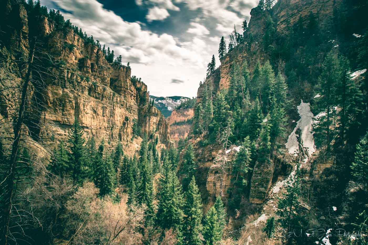 Pine trees in a canyon on the Million Dollar Highway in Colorado