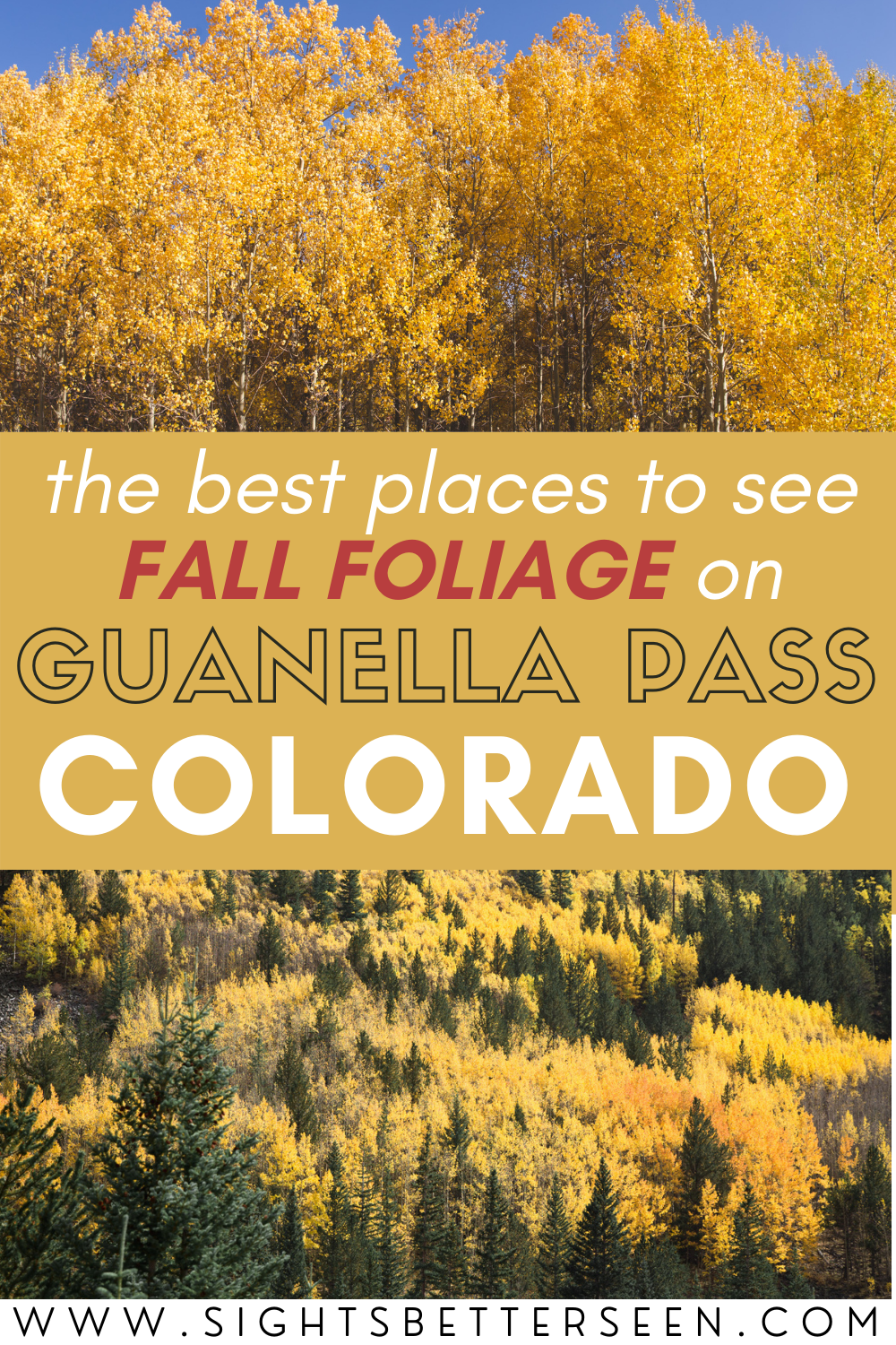 "Text that says, ""The Best Places to See Fall Foliage on Guanella Pass, Colorado"" with yellow aspens in the background"