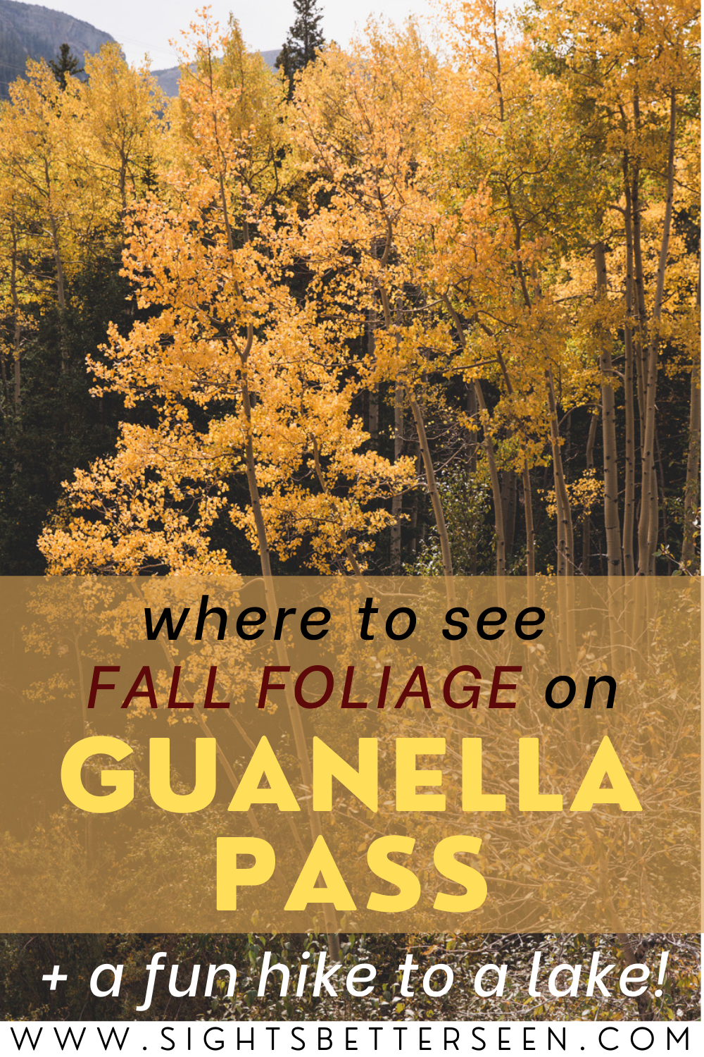 "Text says, ""Where to See Fall Foliage on Guanella Pass + a fun hike to a lake!"" with yellow aspens behind it"