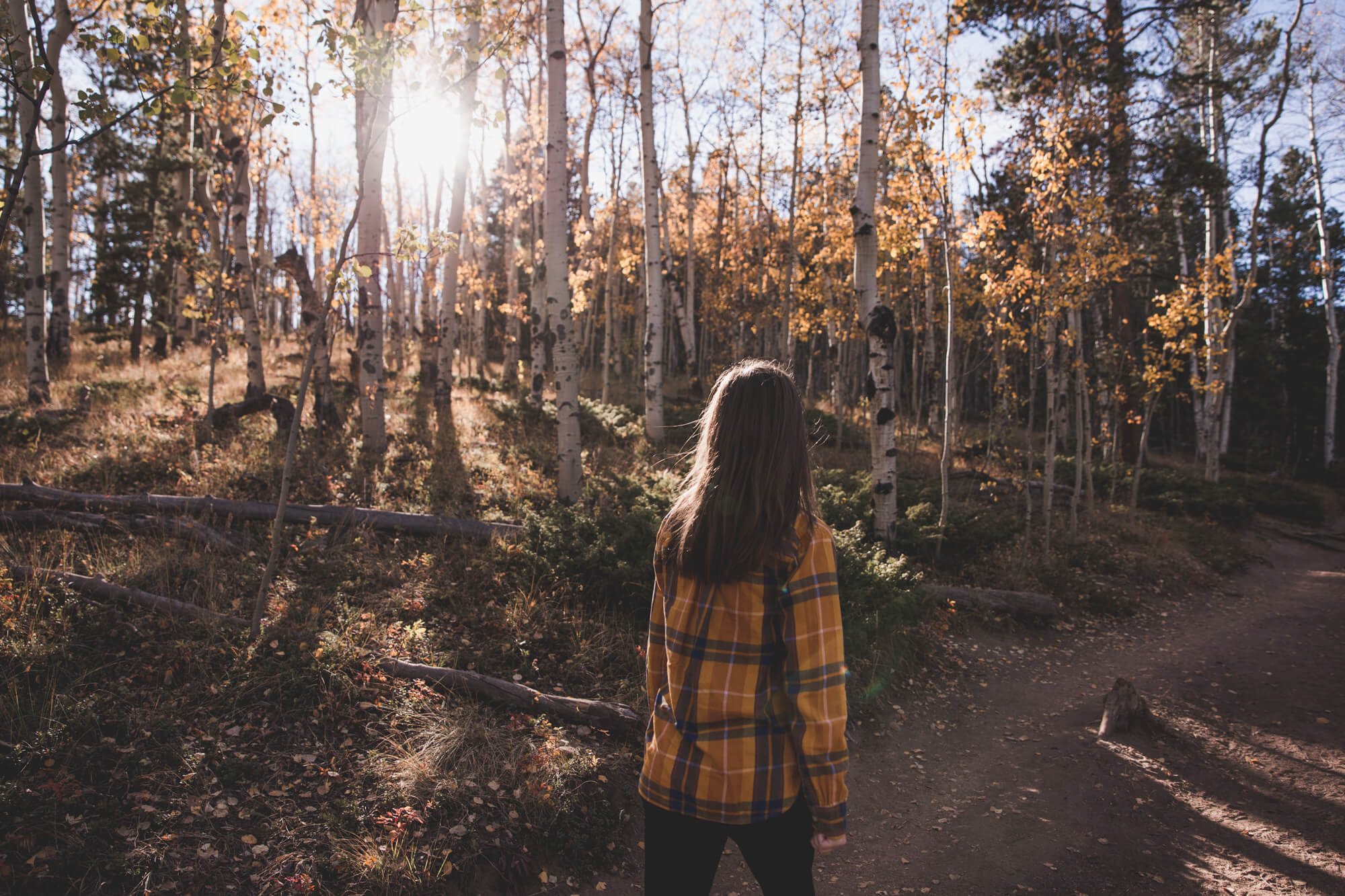 A woman with brown hair and a yellow plaid shirt walking on a trail surrounded by aspen trees with yellow leaves