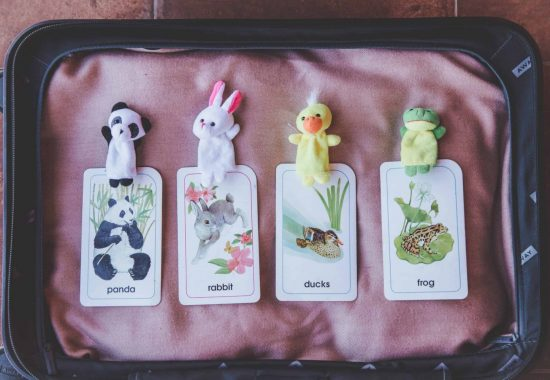 Panda, rabbit, duck, frog animal puppets lying on top of animal flashcards - these are great reward systems for VIP Kid teachers!